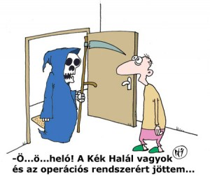 kekhalal_vicc